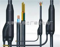 DJFVP耐高温计算机电缆厂家报价
