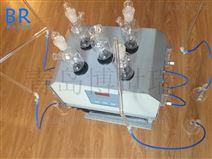 高氯废水消解器