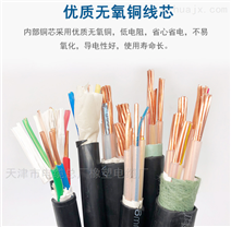 供应计算机电缆DJYVP 2*3*1.0价格