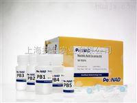哺乳动物种属鉴定 PCR Mix100 次品牌