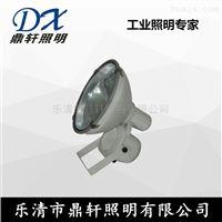鼎轩照明CNT9170A-30W防震投光灯