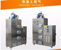旭恩生物颗粒蒸汽锅炉环保蒸汽发生器厂家